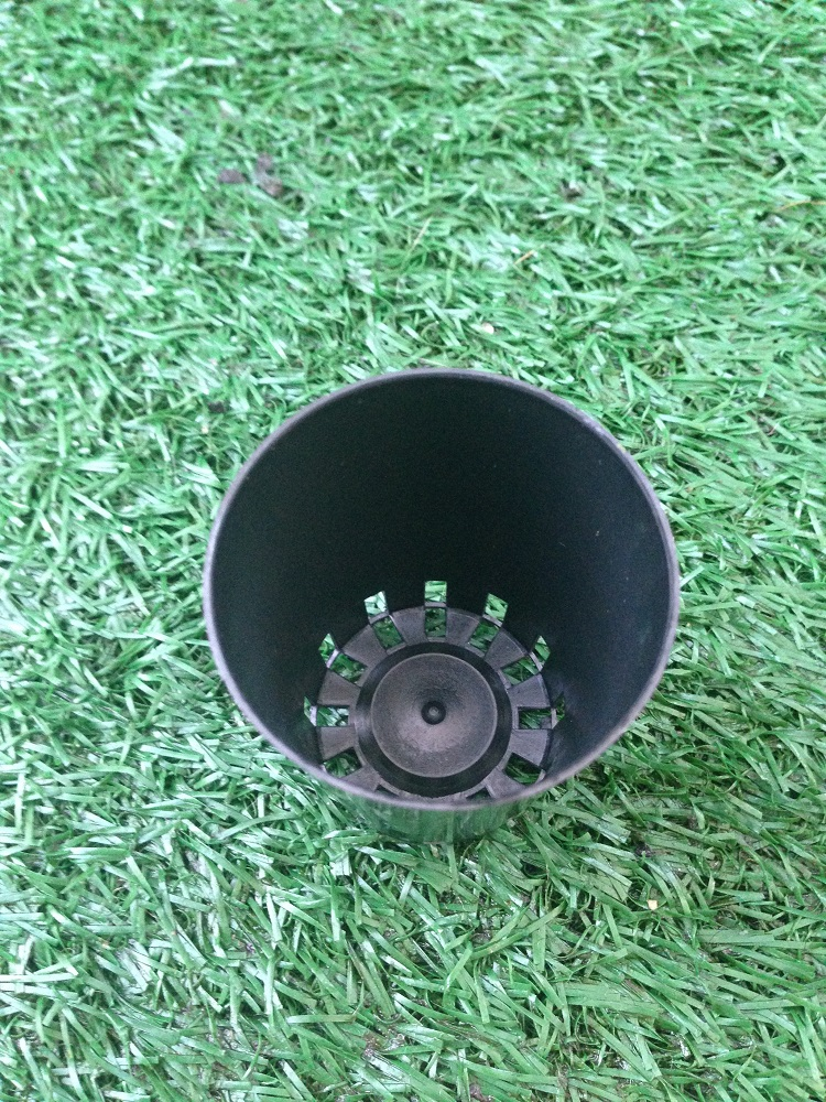 50mm x 65mm Port pot